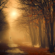 Ildiko Neer - One Missing Moment