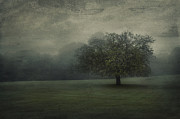 Rural Digital Art - One Tree by Svetlana Sewell