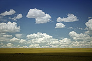 Ranch Prints - Open Skies Print by Andrew Soundarajan