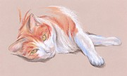 Relaxed Cat Pastels Framed Prints - Orange and White Tabby Cat Framed Print by MM Anderson
