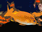 Fish Swimming Prints - Orange fish Print by David Lee Thompson