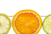 Ripe Posters - Orange lemon and lime slices in water Poster by Elena Elisseeva