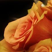 Orange Supreme Print by Bruce Bley
