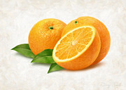 Single Object Painting Posters - Oranges Poster by Danny Smythe