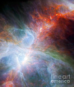 Orion Nebula Print by Science Source