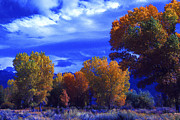 Owens Valley Art - Owens Valley Fall Colors  by Paul W Faust -  Impressions of Light