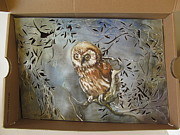Alfred Ng - owl in a shoe box