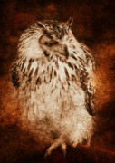 Owl Mixed Media - Owl by Svetlana Sewell