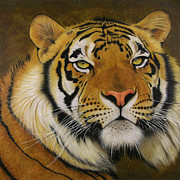 Feline Mixed Media Metal Prints - Ozzi Metal Print by Lawrence Supino