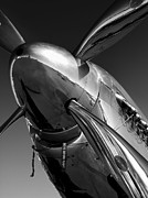 Black-and-white Photo Metal Prints - P-51 Mustang Metal Print by John  Hamlon