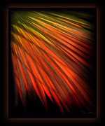 Forgiveness Prints - Palm Sunday Print by Shevon Johnson