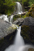 Mt Rainier National Park Prints - Paradise Falls Print by Mike  Dawson