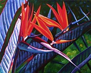 Bird Of Paradise Paintings - Passion for Paradise by Marionette Taboniar