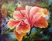 Barbara Haviland Framed Prints - Peach Hibiscus Framed Print by Barbara Haviland