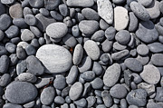 Pebbles Prints - Pebbles on Djupalonssandur beach in Iceland Print by Robert Preston