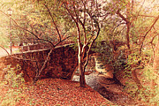 Walkways Posters - Pedestrian Bridge And Strawberry Creek  . 7D10152 Poster by Wingsdomain Art and Photography