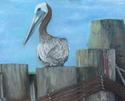 Wildlife Pastels - Pelican at Hatteras Ferry by Cathy Lindsey