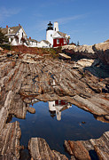 Pemaquid Lighthouse Framed Prints - Pemaquid Point Lighthouse Framed Print by Marcia Colelli