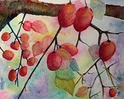 Persimmon Paintings - Persimmon by Stella Schaefer