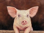 Pig Print by David Stribbling