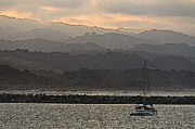Docked Sailboat Posters - Pillar Point Harbor Below Half Moon Bay Hills Poster by Scott Lenhart