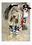 Dogs Digital Art Metal Prints - Pirate Dogs Metal Print by Jane Schnetlage