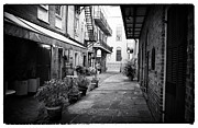 Louisiana Artist Prints - Pirates Alley Print by John Rizzuto