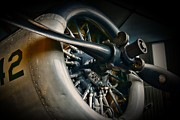 Plane Engine Posters - Plane Propeller  Poster by Paul Ward
