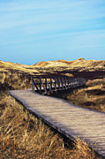 North Sea Prints - Plank walkway Print by Angela Doelling AD DESIGN Photo and PhotoArt