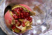 Abalone Seashell Photos - Pomegranate on abalone by Cindy Garber Iverson