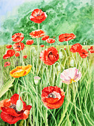 Orange Poppy Art Posters - Poppies Poster by Irina Sztukowski