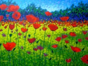Texture Floral Painting Framed Prints - Poppy Field Framed Print by John  Nolan