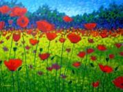 Poppy Field Print by John  Nolan