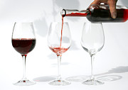 Pouring Red Wine Into Glass Print by Patricia Hofmeester