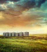 Sandra Cunningham - Prairie grain silos in late summer
