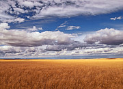 Cloudscapes Posters - Prairie Wyoming U S A Poster by Don Spenner