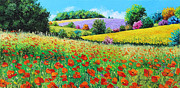Rural Landscapes Prints - Provencal Flowers Print by Jean-Marc Janiaczyk