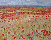Provence Poppies Print by Barbara Anna Knauf