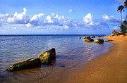 Puerto Rico Photo Prints - Puerto Rico Rio Grande Shoreline Print by Thomas R Fletcher