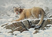Mountain Lion Paintings - Puma by Roberto Bianchi