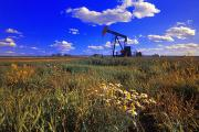Oil Drilling Framed Prints - Pumpjack In A Field, Alberta, Canada Framed Print by Corey Hochachka
