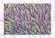 Floral Art - Purple and Green by Holly Kempe