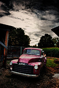 Farm Scenes Photos - Purple Love by Emily Stauring