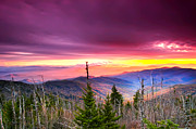 Randall Branham - PURPLE MOUNTAIN MAJESTY