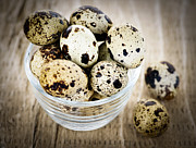 Spots  Art - Quail eggs by Elena Elisseeva