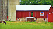 Quilt Barns Framed Prints - Quilt Barn Framed Print by Carol Toepke