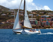 On Deck Originals - Racing at St. Thomas 1 by Tom Doud