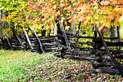 Split Rail Fence Photo Framed Prints - Rail Fence Fall Color Framed Print by Thomas R Fletcher