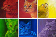 Cats Originals - Rainbow Cats by Cara Bevan