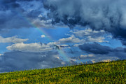 Rainbow Over Pasture Field Print by Thomas R Fletcher